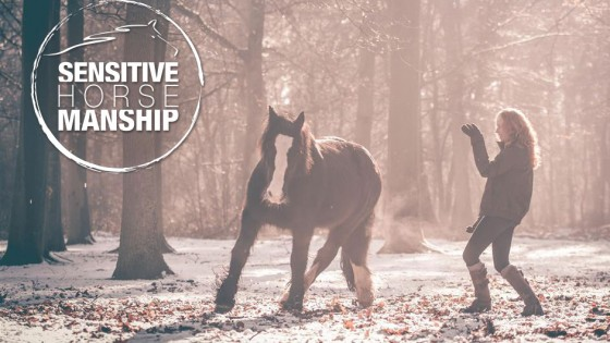 Sensitive-horsemanship-opleiding