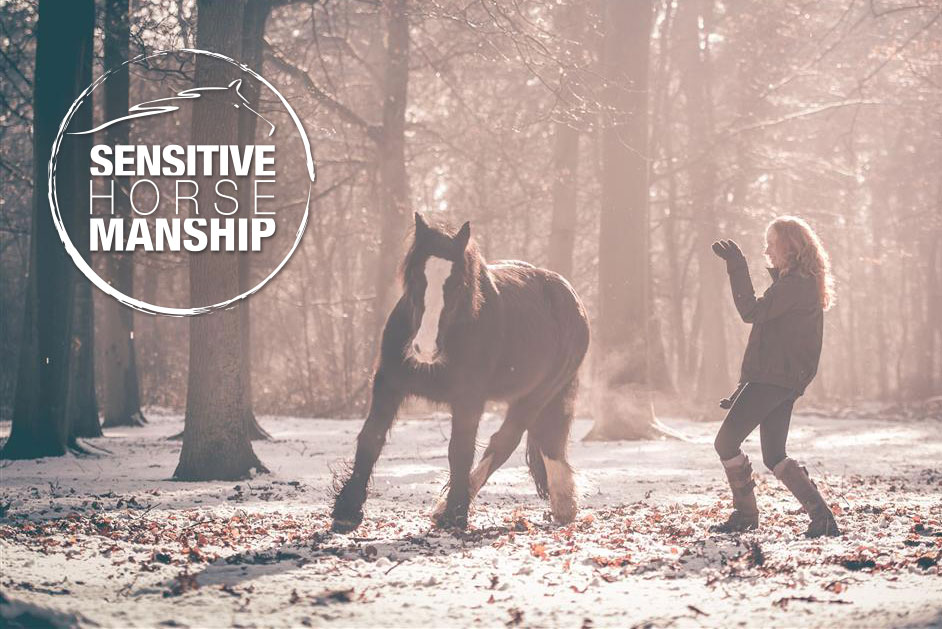 Sensitive-horsemanship-opleiding